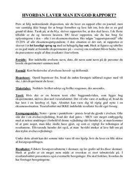 download Lettura e comprensione della lingua inglese
