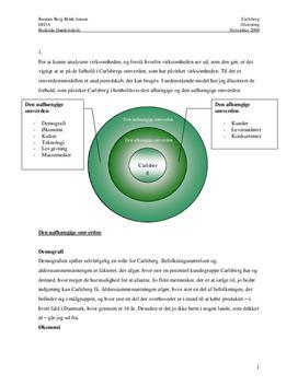 Virksomhedsanalyse af Carlsberg | 2008
