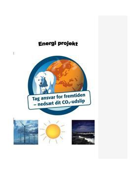 Tag ansvar for fremtiden- nedsæt dit CO2-udslip (Energirapport)