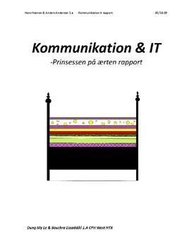 Kommunikation & IT rapport