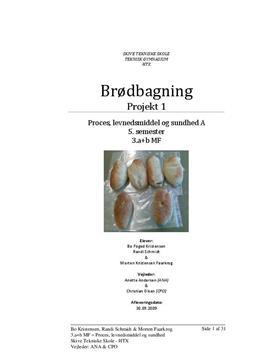 """Brødprojekt i """"Proces, levnedsmiddel og sundhed"""""""