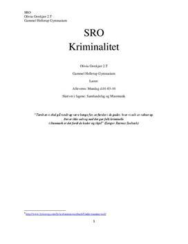 SRO: Kriminalitet - indvandrer