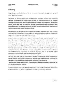 SOP: Carlsberg i Virksomhedsøkonomi og International Økonomi