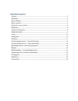SRP om Idrætsskader i Knæet i Idræt B og Biologi A
