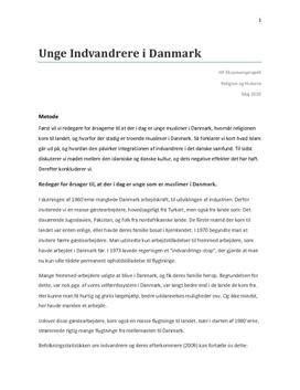 Eksamens projekt: Unge muslimer i Danmark