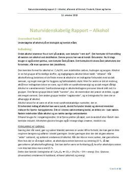 NV Rapport - Alkohol