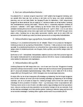 Carlsberg | Analyse | Virksomhedsøkonomi B
