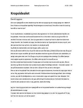 dansk mundtlig eksamen essay