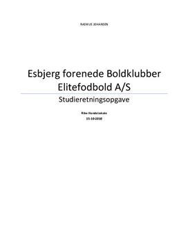 SRO om EfB | Virksomhedsøkonomi A og Afsætning A