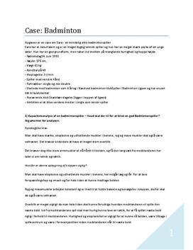 Case: Badminton