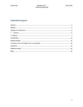 SOP om Olie i International Økonomi A og Samfundsfag B