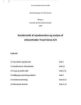Branceanalyse af Travel Sense