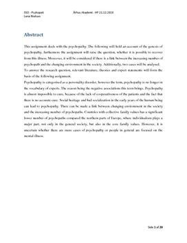 SSO med analyse af Peter Lundin i Psykologi B