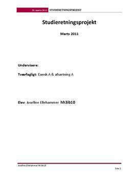 SOP om McDonald's Danmark i Afsætning A og Dansk A