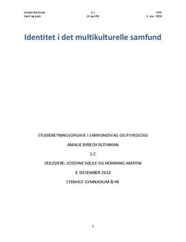 SRO om identitet i det multikulturelle samfund i samf A og psyk B