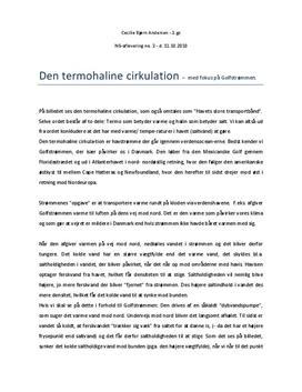 Den Termohaline Cirkulation - Rapport i Natugeografi