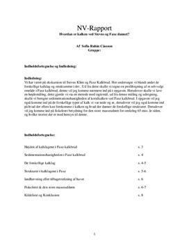 NV-rapport om kalk - Stevns Klint og Faxe Kalkbrud