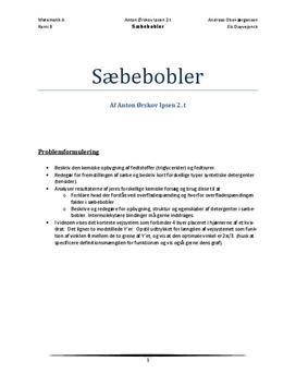 """SRO: Sæbebobler og """"motorvejsproblemet""""   Matematik A og Kemi A"""