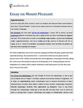 vejledning til engelsk litterært essay a-niveau