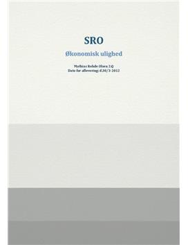 SRO om økonomisk ulighed i Danmark