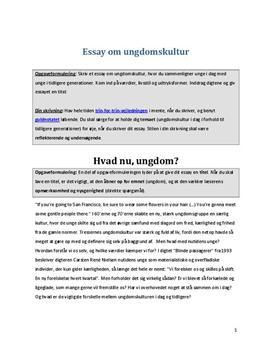 eksempel på essay dansk stx