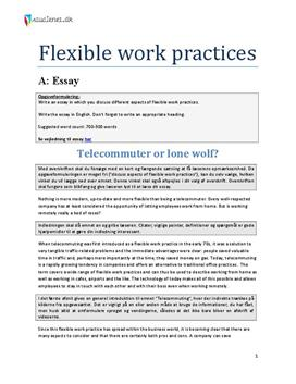 "working practices essay The purpose of this document is to assist departments and crown corporations in developing and implementing the ""safe work practices and safe job procedures"" element of their health and safety management system (hsms)."
