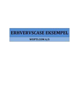 Eksempel på Erhvervscase Synopsis