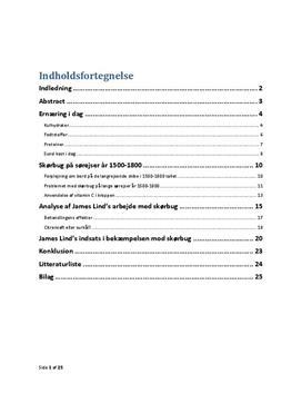 SRP om Skørbug på sørejser i 1500-1800 tallet i Biologi A og Historie A