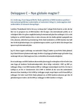 Nye Globale Magter | Delopgave C