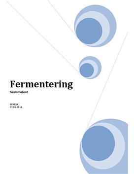 Fermentering af skimmelost | SO i Bioteknologi A og Matematik A