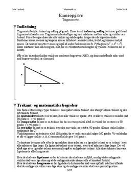 Trigonometriske funktioner | Emneopgave