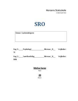 SRO om danske syrienskrigere