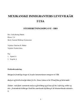 SRO om mexicanske immigranters levevilkår i USA