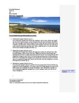 Undersøgelse af Stevns Klint | Rapport | Naturgeografi C