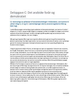 Delopgave C: Det arabiske forår og demokratiet   Samfundsfag A