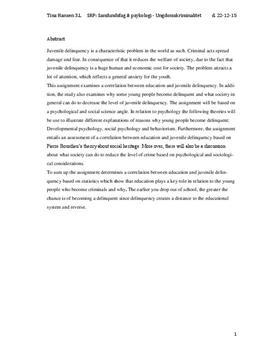 SRP om uddannelses betydning for ungdomskriminalitet