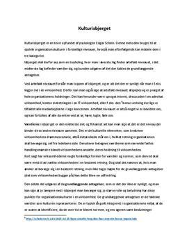 Edgar Scheins isbjerg | Organisationskultur | Noter