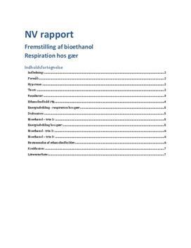 Rapport om fremstilling af Bioethanol ved gær