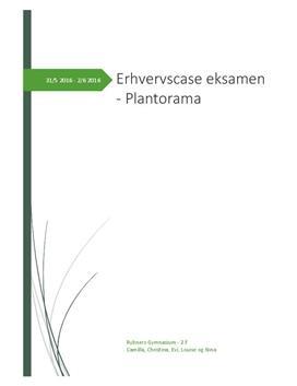 Erhvervscase om Plantorama