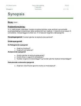 Effekten af skybrud   NF   Synopsis