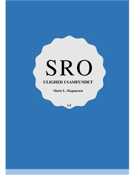 SRO om Bænken af Per Fly og social ulighed