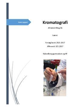 Rapport om kromatografi