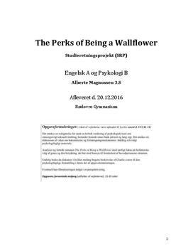 SRP om The Perks of Being a Wallflower og omsorgssvigt