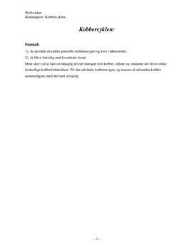 Kobbercyklen - Rapport i Kemi