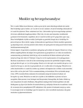 Musklernes opbygning og bevægelsesanalyse af en springgymnast