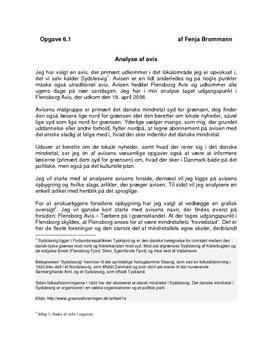 Analyse af Flensborg Avis