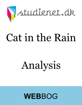 an analysis of the cat in the rain by ernest hemingway In our time study guide contains a biography of ernest hemingway, literature essays, quiz questions, major themes, characters, and a full summary and analysis  cat in the rain  hemingway's dr adams: an analysis and a diagnosis.